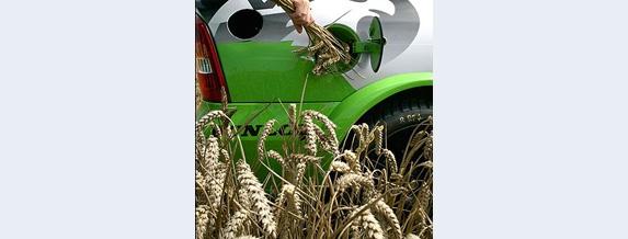Много въпросителни около използването на биогоривата