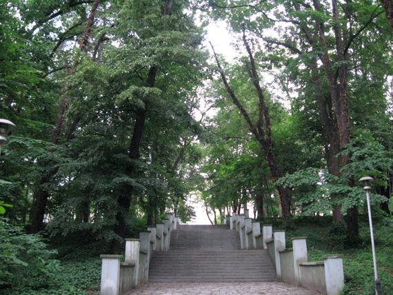 military_garden1.jpg