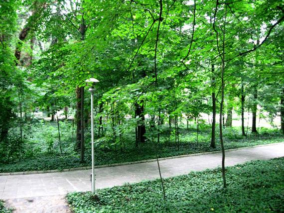 military_garden4.jpg