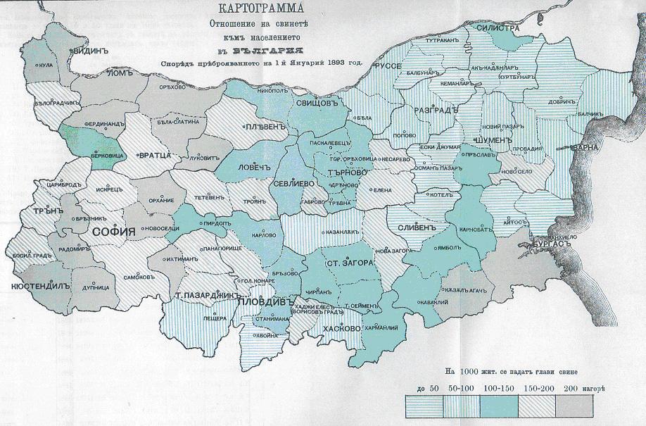 kozeva_kartograma8.jpg