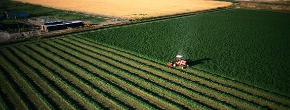 МЗХ обеща общ регистър на земеделските земи