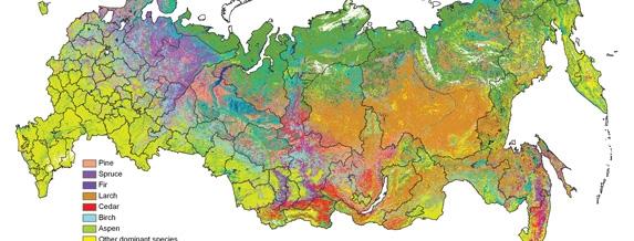 Русия разсекрети карти получени от сателити