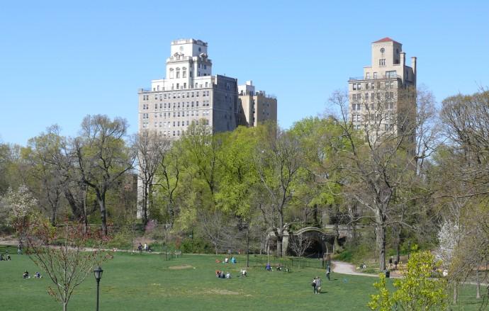Brooklyn View from Prospect Park Custom
