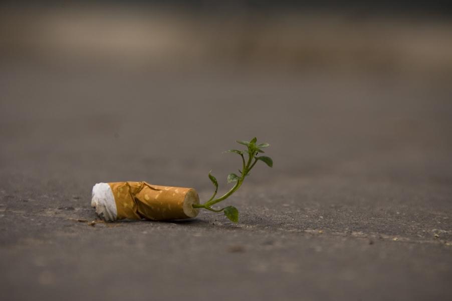 Фасовете от цигарите ще съхраняват енергията