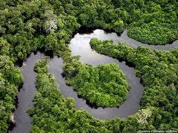 Брализия следи климата по Аамазонка от гигантска кула