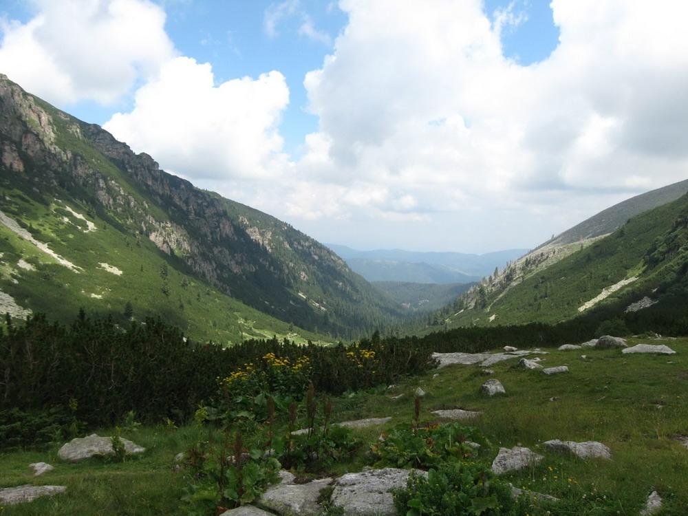 Екологичния доклад на WWF за българите: