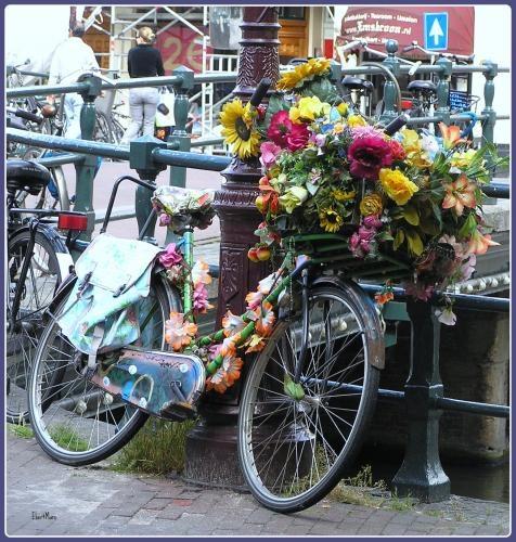 Амстердам помага на бежанците с колелета