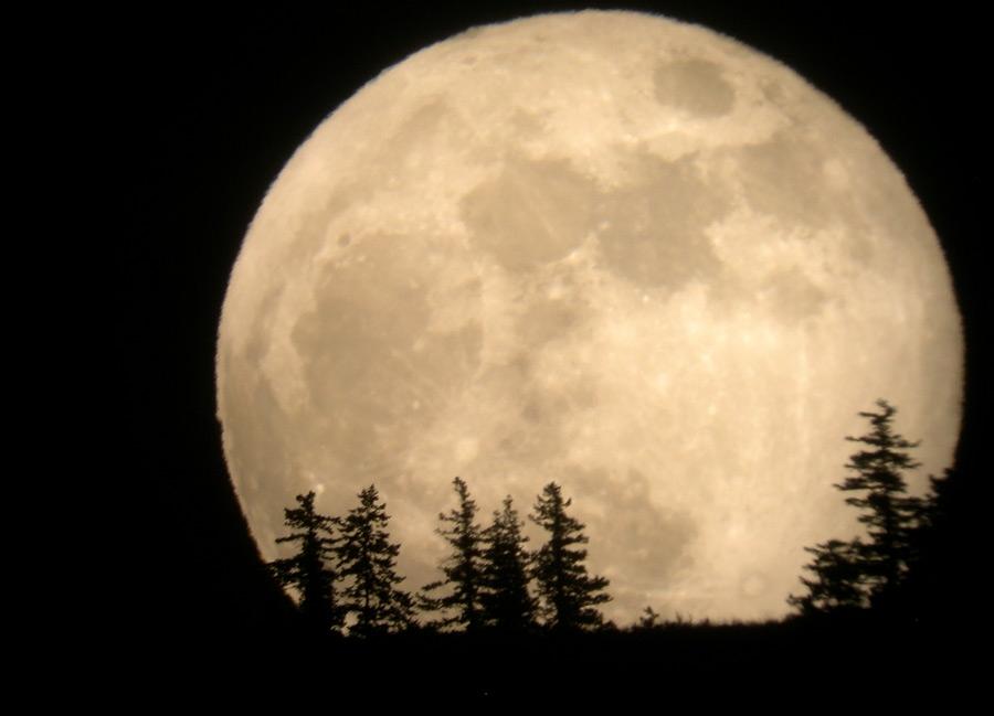 Този месец ще видим най-голямата Луна от 68 години насам