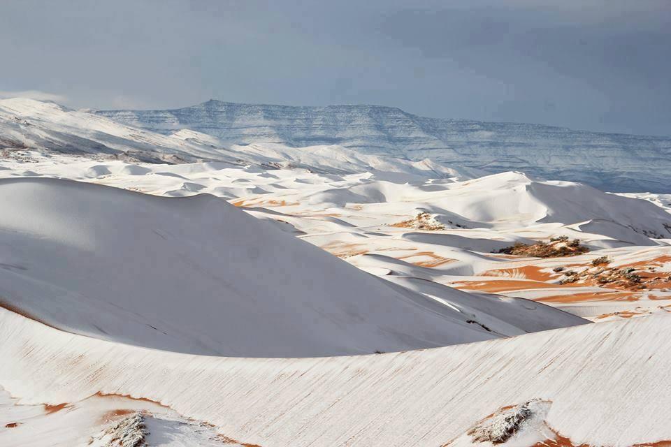 Сняг в Сахара за втора поредна година