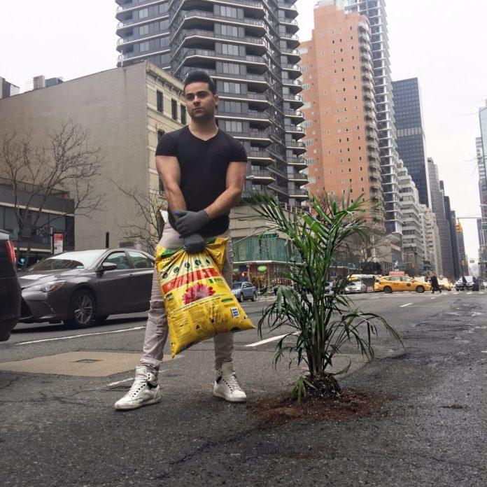 Американец засажда растения в дупки по нюйоркските улици