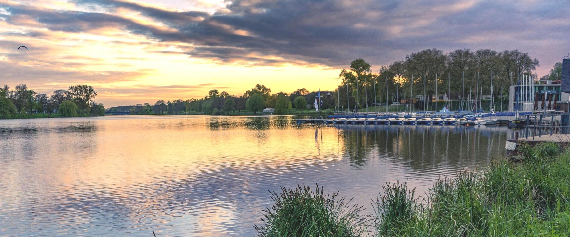 Недостиг на кислород уби 20 тона риба в германско езеро