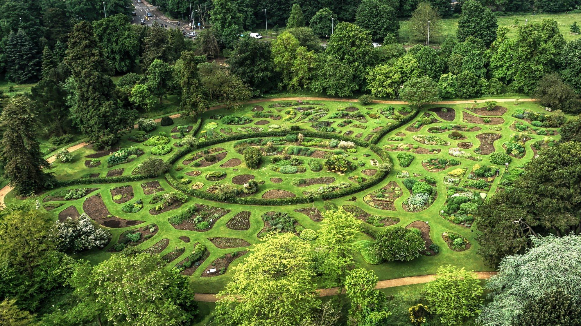 Отварят виртуално ботаническата градина в Кембридж
