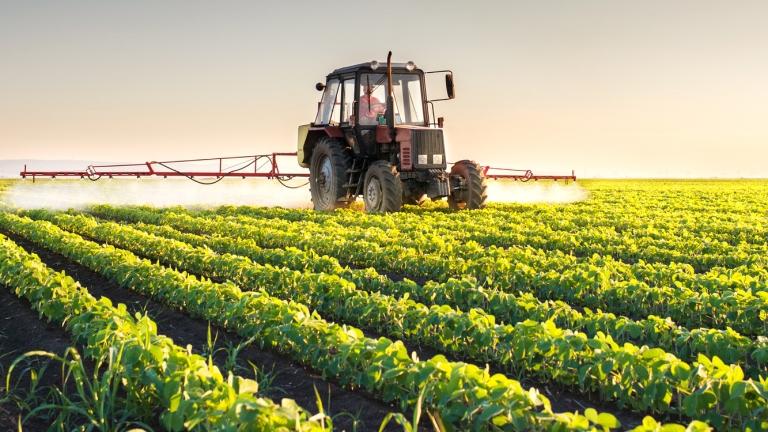 Интензивното земеделие увеличава опасността от пандемии