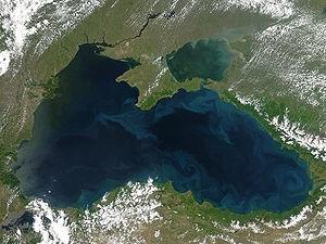 Научни центрове ще проверяват състоянието на Черно море