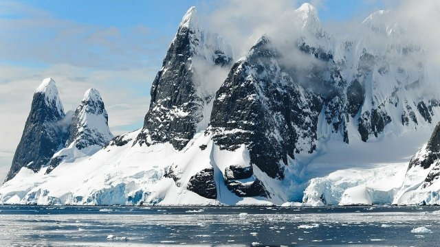 Откриха нови видове на Антарктида