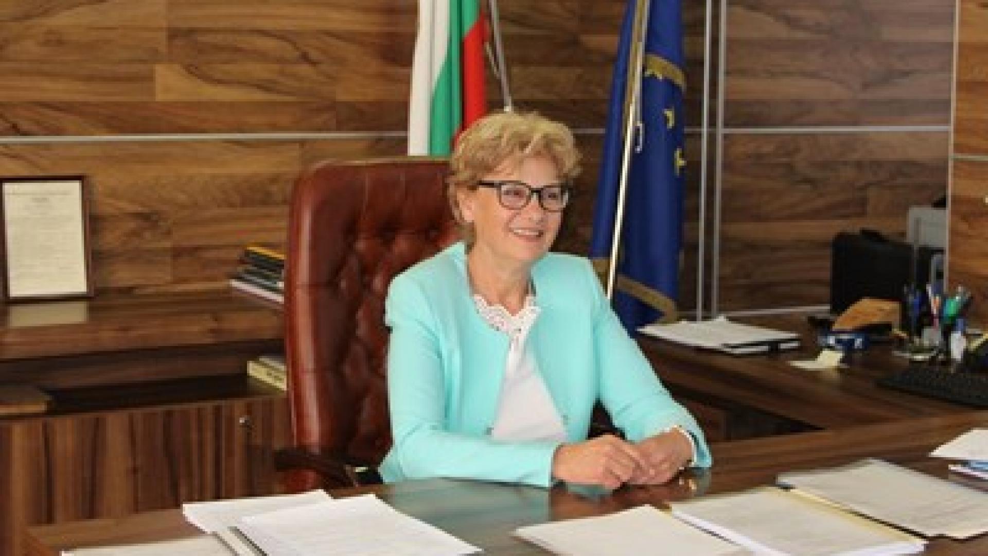 Комитова: При 900 човека, външна фирма се занимава с толтаксите